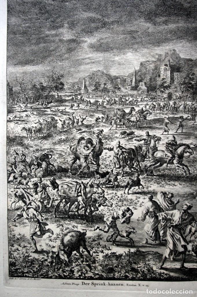 Arte: 1729 - BIBLIA - 8ª PLAGA DE EGIPTO - LAS LANGOSTAS - LUYKEN - ENGRAVING - GRAVURE - Foto 5 - 80629622