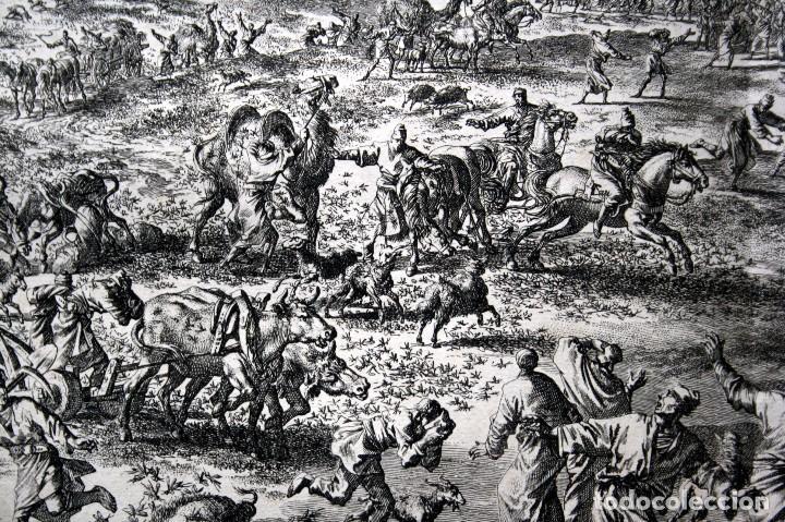 Arte: 1729 - BIBLIA - 8ª PLAGA DE EGIPTO - LAS LANGOSTAS - LUYKEN - ENGRAVING - GRAVURE - Foto 6 - 80629622