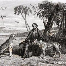 Arte: 1863 - GRABADO - JOSE DE ANCHIETA - MISIONERO JESUITA - BRASIL - 178X135MM. Lote 95404819