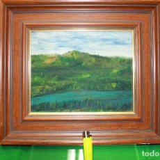 Arte: 2 ÓLEOS SOBRE LIENZO Y BASTIDOR, ENMARCADOS Y FIRMADOS. . Lote 102114559
