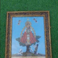 Arte: ANTIGUO CUADRO CON LAMINA DE LA VIRGEN DE CORTES (ALCARAZ) CON BONITO MARCO DORADO. Lote 112869563