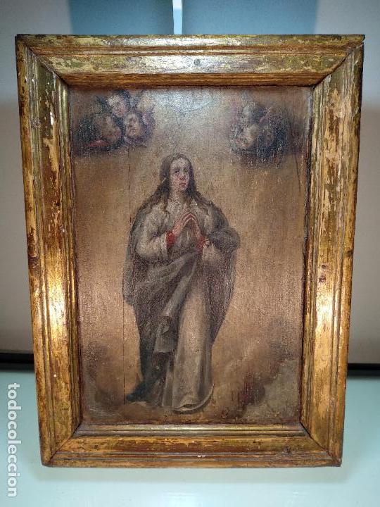 BELLO OLEO SOBRE TABLA DE LA INMACULADA CONCEPCIÓN - SIGLO XVII-XVIII - MARCO DE ÉPOCA - 51X38 CM - (Arte - Arte Religioso - Pintura Religiosa - Oleo)