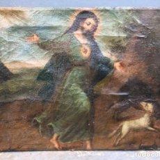 Arte: COLONIAL (XIX) - ÓLEO SOBRE TELA (REENTELADO) - CRISTO Y ANIMALES. Lote 127963815