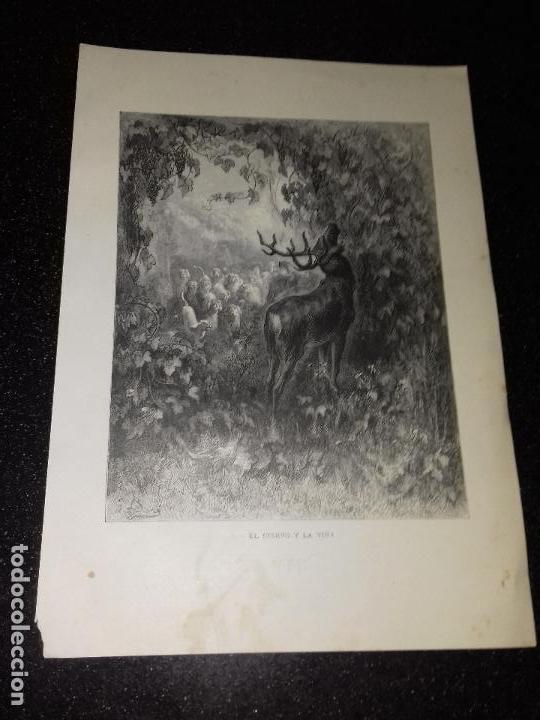 LITOGRAFIA. GRABADO DE GUSTAVO DORÉ. EL CIERVO Y LA VIÑA . 1885. (Arte - Arte Religioso - Litografías)