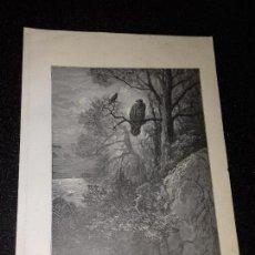 Arte: LITOGRAFIA. GRABADO DE GUSTAVO DORÉ. EL AGUILA Y LA URRACA. 1885.. Lote 132047762