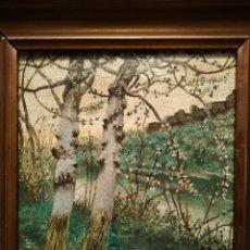 Arte: MANUEL GARCIA RODRIGUEZ (1863-1925) MEDIDAS 15.5 X 15.5 LIENZO. Lote 143731510