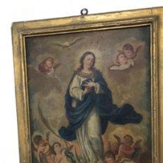 Arte: ÓLEO VIRGEN INMACULADA CON AMORCILLOS SIGLO XVIII VI. Lote 148100658