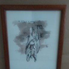 Kunst - Burro acuarela firmada ¿grandio?23x18ctms - 151103626