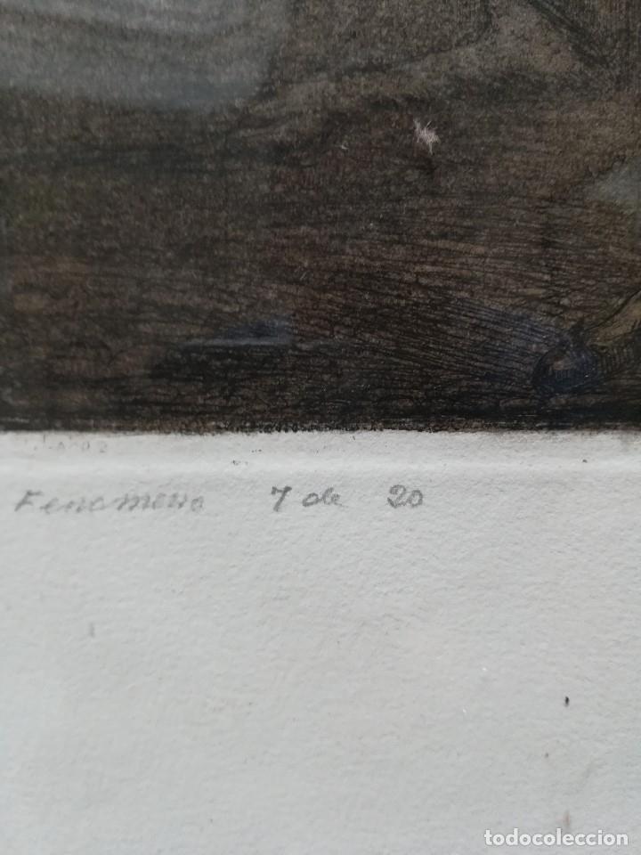 Arte: El fenomeno, firmado por Manuel Lahoz Valle grabado 7 de 20 - Foto 4 - 172757018
