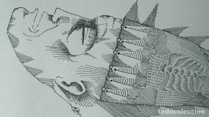 Arte: JOAN PONÇ, GRABADO FIRMADO Y NUMERADO. GALERIA RENÉ METRAS 1965 - Foto 2 - 178360275
