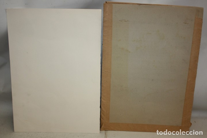 Arte: JOAN CRUSPINERA (TIANA, BARCELONA, 1945) LITOGRAFIA FIRMADA A MANO CON TIRAJE 49/250 - Foto 8 - 180184741