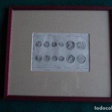 Arte: GRABADO CON MARCO Y CRISTAL MEDAILLES 1844. AL ACERO POR VERNIER LEMAITRE DIREXIT. NUMISMÁTICA. Lote 183941757