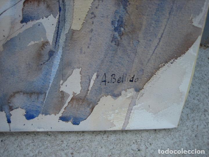 Arte: Acuarela . Almudena Bellido Fdez-Montes. Córdoba - Foto 4 - 194957486