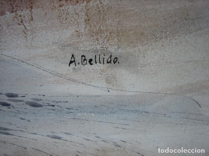 Arte: Acuarela . Almudena Bellido Fdez-Montes. Córdoba - Foto 4 - 194957572