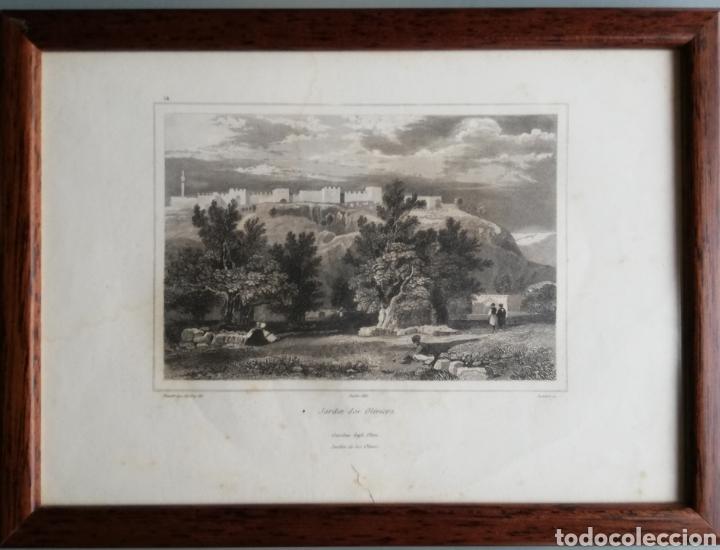 Arte: 14 cuadros con GRABADOS ENMARCADOS - 27 cm x 20 cm - marco nogal - cristal mate - MUY BUEN ESTADO - Foto 15 - 195785210