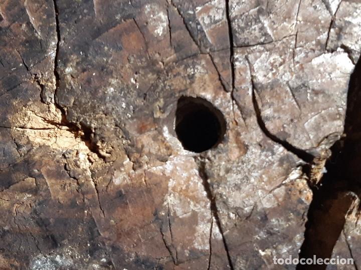 Arte: Santa Bárbara. Talla de madera policromada. Gótico. - Foto 68 - 197189278