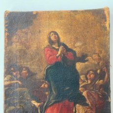 Arte: VIRGEN INMACULADA , ESC. ESPAÑOLA S. XVIII , ÓLEO LIENZO , FIRMADO AL REVERSO. Lote 217676328