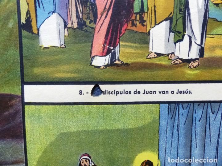 Arte: 10 LAMINAS MURALES DE HISTORIA SAGRADA, ED. SEIX BARRAL, AÑOS 1950 - VER FOTOS ADICIONALES - Foto 3 - 246644880