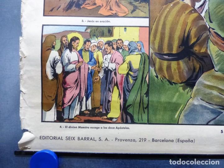 Arte: 10 LAMINAS MURALES DE HISTORIA SAGRADA, ED. SEIX BARRAL, AÑOS 1950 - VER FOTOS ADICIONALES - Foto 4 - 246644880