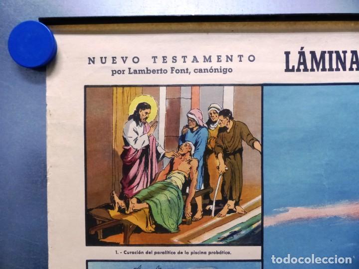 Arte: 10 LAMINAS MURALES DE HISTORIA SAGRADA, ED. SEIX BARRAL, AÑOS 1950 - VER FOTOS ADICIONALES - Foto 6 - 246644880