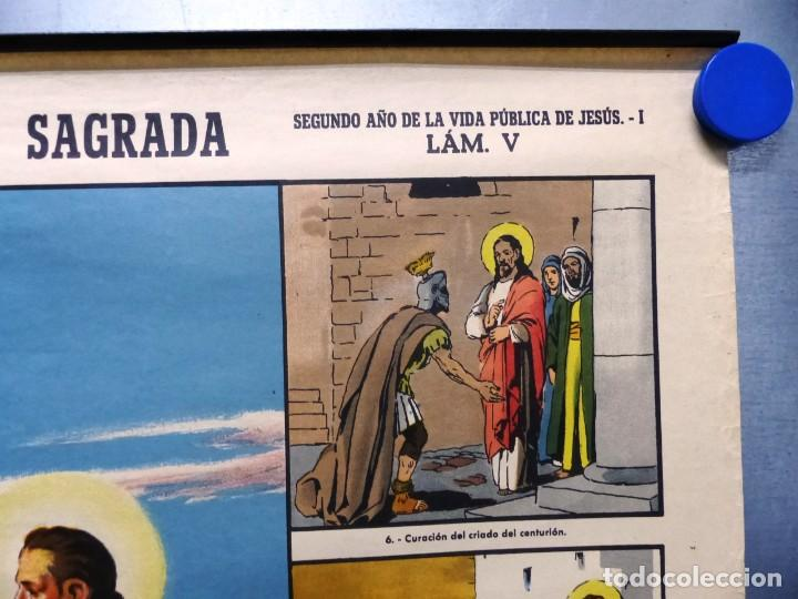 Arte: 10 LAMINAS MURALES DE HISTORIA SAGRADA, ED. SEIX BARRAL, AÑOS 1950 - VER FOTOS ADICIONALES - Foto 7 - 246644880