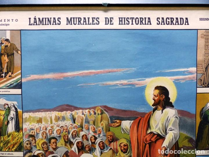 Arte: 10 LAMINAS MURALES DE HISTORIA SAGRADA, ED. SEIX BARRAL, AÑOS 1950 - VER FOTOS ADICIONALES - Foto 8 - 246644880