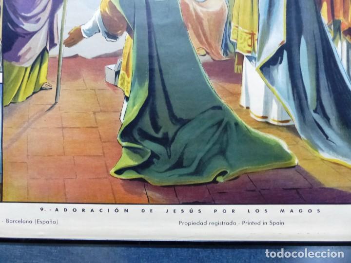 Arte: 10 LAMINAS MURALES DE HISTORIA SAGRADA, ED. SEIX BARRAL, AÑOS 1950 - VER FOTOS ADICIONALES - Foto 15 - 246644880