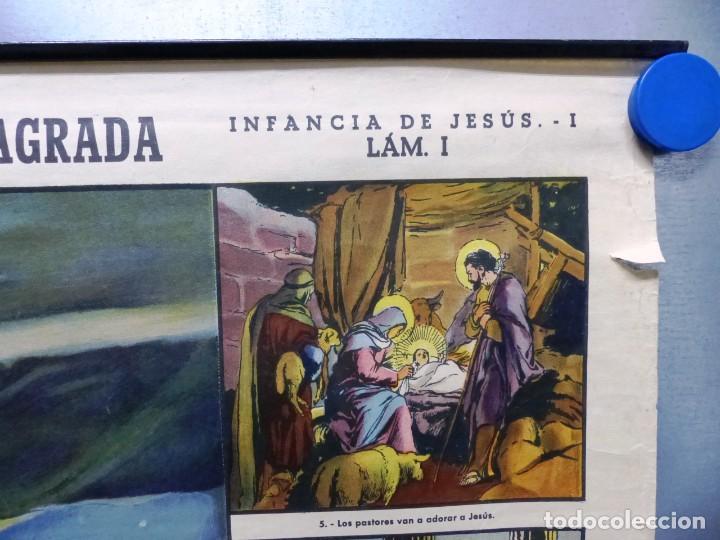 Arte: 10 LAMINAS MURALES DE HISTORIA SAGRADA, ED. SEIX BARRAL, AÑOS 1950 - VER FOTOS ADICIONALES - Foto 16 - 246644880