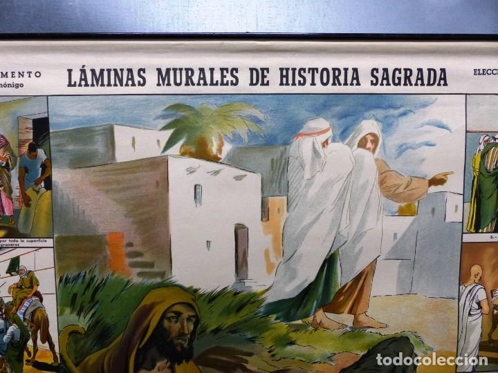 Arte: 10 LAMINAS MURALES DE HISTORIA SAGRADA, ED. SEIX BARRAL, AÑOS 1950 - VER FOTOS ADICIONALES - Foto 33 - 246644880