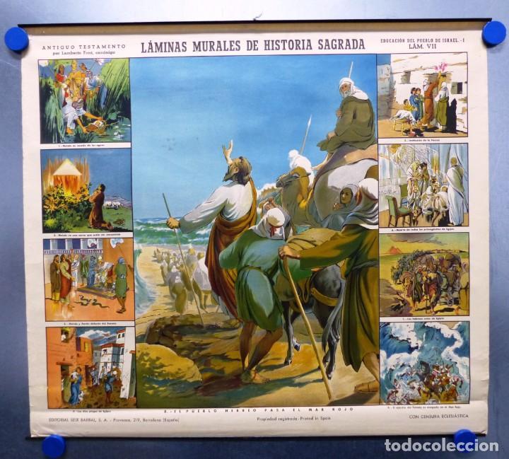 Arte: 10 LAMINAS MURALES DE HISTORIA SAGRADA, ED. SEIX BARRAL, AÑOS 1950 - VER FOTOS ADICIONALES - Foto 36 - 246644880