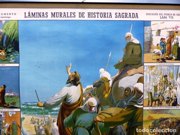 Arte: 10 LAMINAS MURALES DE HISTORIA SAGRADA, ED. SEIX BARRAL, AÑOS 1950 - VER FOTOS ADICIONALES - Foto 37 - 246644880