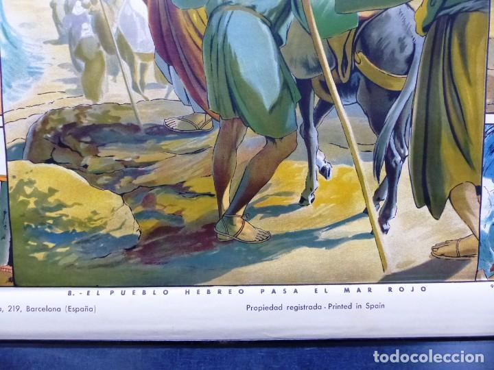 Arte: 10 LAMINAS MURALES DE HISTORIA SAGRADA, ED. SEIX BARRAL, AÑOS 1950 - VER FOTOS ADICIONALES - Foto 38 - 246644880