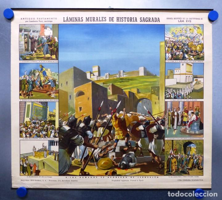 Arte: 10 LAMINAS MURALES DE HISTORIA SAGRADA, ED. SEIX BARRAL, AÑOS 1950 - VER FOTOS ADICIONALES - Foto 54 - 246644880