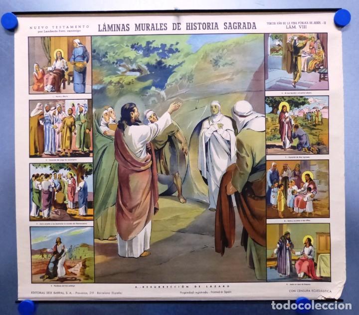 Arte: 10 LAMINAS MURALES DE HISTORIA SAGRADA, ED. SEIX BARRAL, AÑOS 1950 - VER FOTOS ADICIONALES - Foto 57 - 246644880