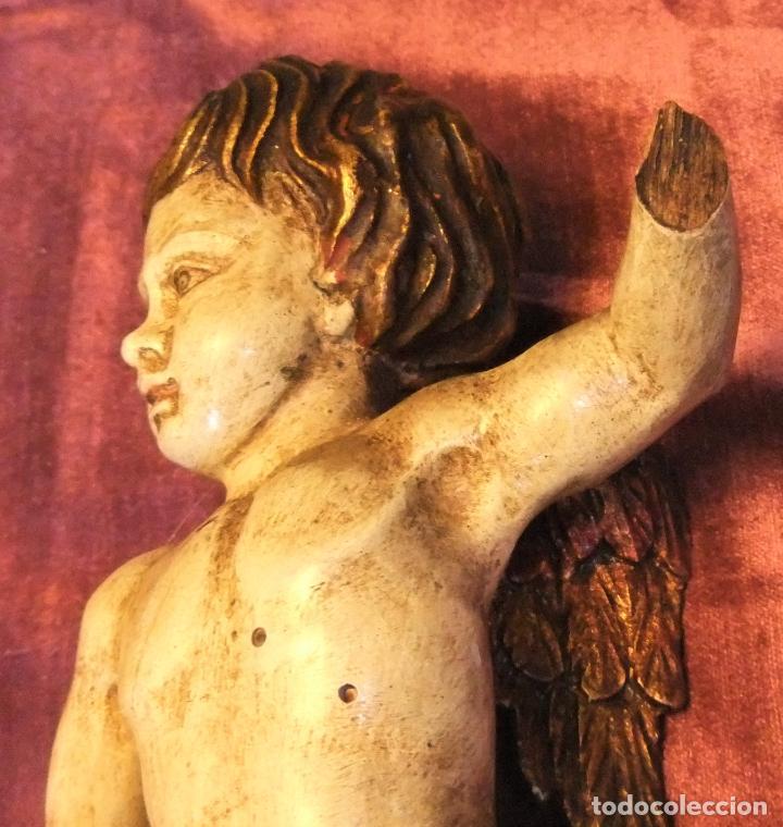 Arte: ANTIGUO TALLA DE ANGEL QUERUBIN ALADO DE MADERA POLICROMADA S.XVIII-XIX - Foto 4 - 255491020