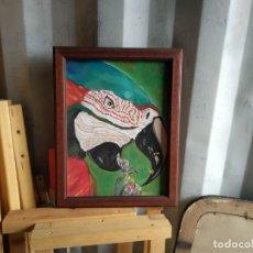 Arte: CUADRO LORO SOBRE TABLA CON MARCO. Lote 257285475