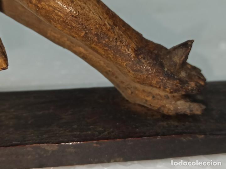 Arte: Antiguo Cristo crucificado. Siglo XVIII. Of - Foto 10 - 265107369