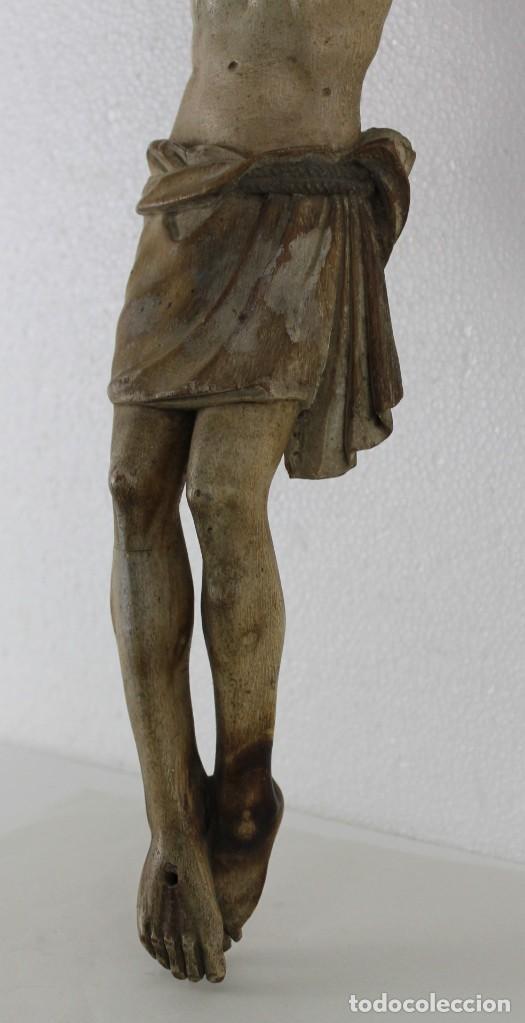 Arte: Cristo gran tamaño en madera tallada y policromada del siglo XIX - Foto 11 - 278681783