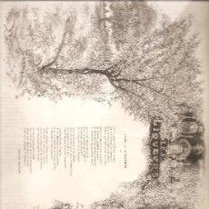 Arte: 2599. LICORES: POEMA DE CHARLES MONSELET. Lote 15681309