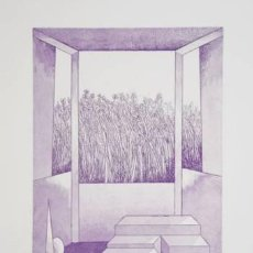 Arte: DANILO BERGAMO - AGUAFUERTE ORIGINAL FIRMADA Y NUMERADA. Lote 21838738