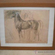 Arte: BOSETO DE UN CABALLO. Lote 23426309