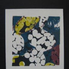 Arte: SERIGRAFIA FIRMADA ORIGINAL CARMEN IBARRA. Lote 46039131