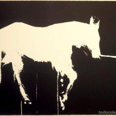 """Arte: """"CABALLO"""", SERIGRAFÍA ORIGINAL FIRMADA Y NUMERADA (5/40), EDICIÓN LIMITADA, AUTOR JOAN J.GUILLEN. Lote 59978539"""