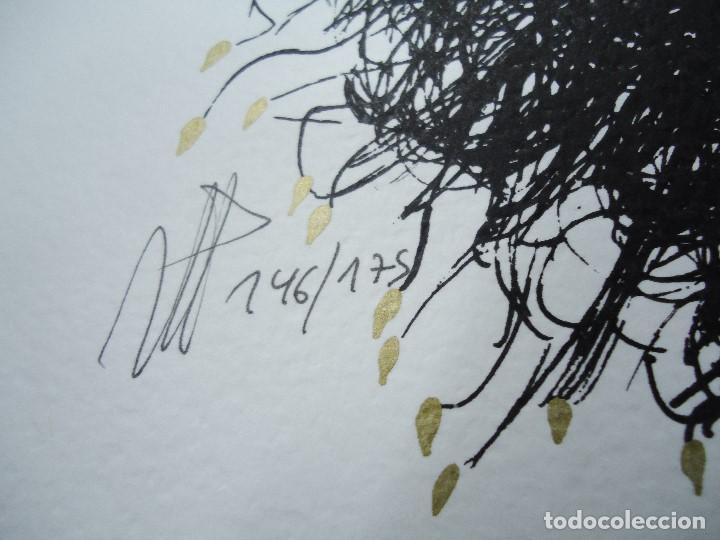 Arte: LEVÍTICO. obra grafica de Mertxe Periz 4 grabados y 1 tela - Foto 6 - 98783659