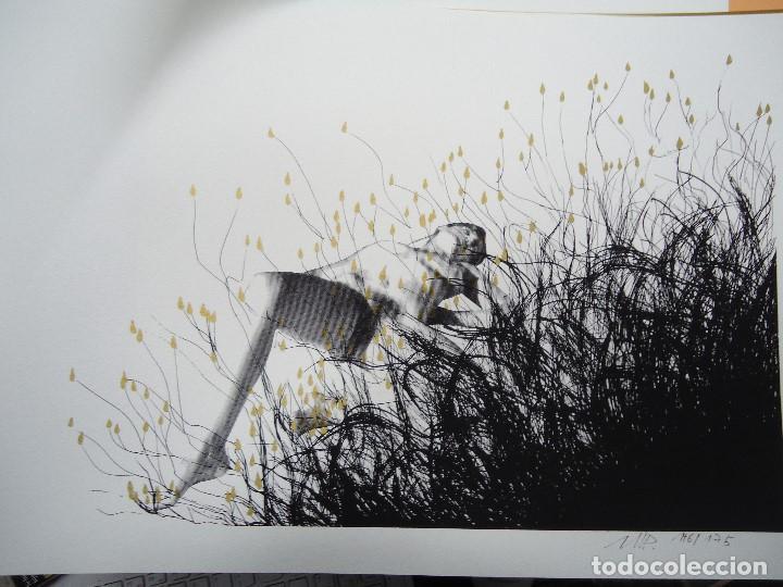 Arte: LEVÍTICO. obra grafica de Mertxe Periz 4 grabados y 1 tela - Foto 7 - 98783659