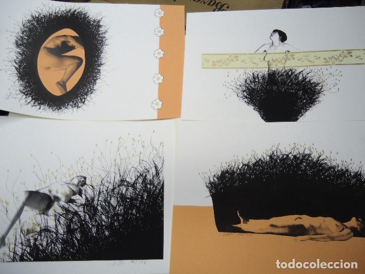 Arte: LEVÍTICO. obra grafica de Mertxe Periz 4 grabados y 1 tela - Foto 9 - 98783659