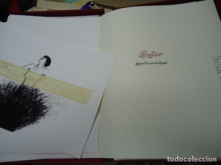 Arte: LEVÍTICO. obra grafica de Mertxe Periz 4 grabados y 1 tela - Foto 11 - 98783659
