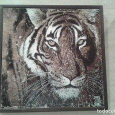 Arte: CUADRO DIBUJO TIGRE. Lote 119573875