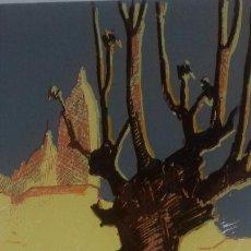 Arte: ANGEL CRISTOBAL HIGUERA. 3 SERIGRAFIAS NUMERADAS 184/200. AÑO 1984. 29X43 CMS.NUEVAS. CON CARPETA.. Lote 116693059