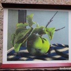 Arte: EDUARDO URCULO - SERIGRAFIA ' ROSA ' 1982, FIRMADA Y NUMERADA, ENMARCADA.. Lote 132595738